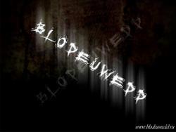 Blodeuwedd