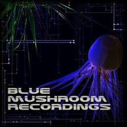 Blue Mushroom Recordings