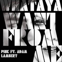 Adam Lambert ft. P!nk