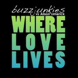 Buzz Junkies Feat Alison Limer