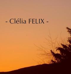 Cleila Felix