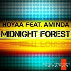 Hoyaa feat. Aminda