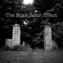 The Black Swan Effect