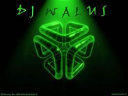 Dj Walus