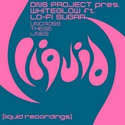 Dns Project Pres Whiteglow Feat Lo-fi Sugar
