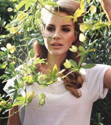 CAZZETTE vs Lana Del Rey