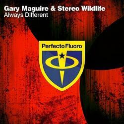 Gary Maguire & Stereo Wildlife