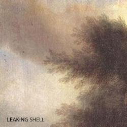 Leaking Shell