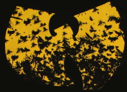 Wu-Tang Killa Bees