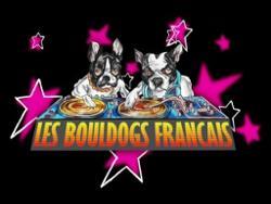 Les Bouldogs Francais