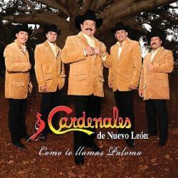 Cardenales De Nuevo Leon