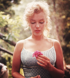Marllyn Monroe