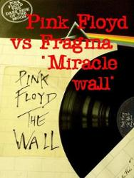 Pink Floyd Vs Fragma