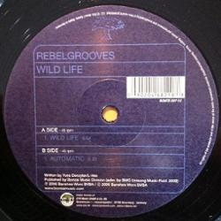 Rebelgrooves