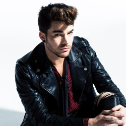 adam lambert if i had you слушать