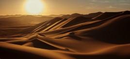 Музыкальная подборка: Арабская музыка