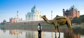 Музыкальная подборка: Индийская музыка