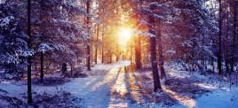 Музыкальная подборка: Миксы на зимнего настроения
