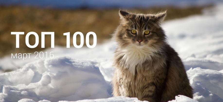 Топ 100 Zaycev.net март 2016
