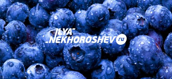Музыкальная подборка: Ilya Nekhoroshev - Blueberry mix